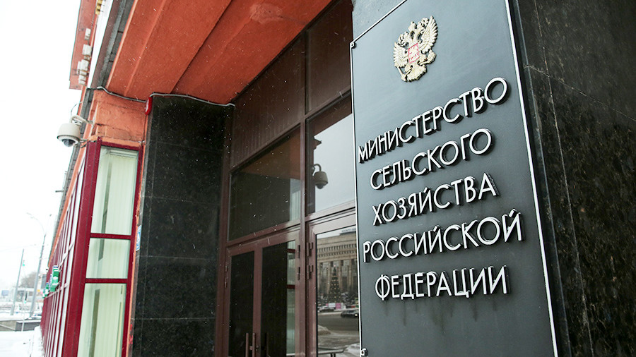 В Минсельхозе заявили, что запасов гречихи в России хватит до урожая следующего года